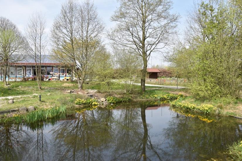 Blick über Teich auf Schule